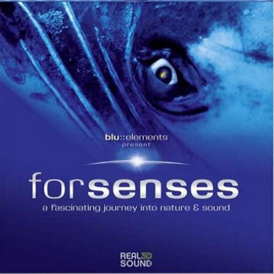 Sony forsenses DTS-HD MA5.1 7.1 Dolby Digital