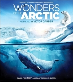 Wonders of the Arctic 2014(Dolby Atmos)
